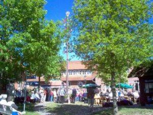 Maibaumfest Mardorf